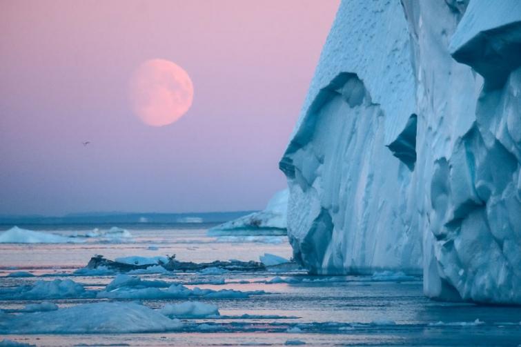 3a318b1-aisbergy-grenlandia--5-.jpg
