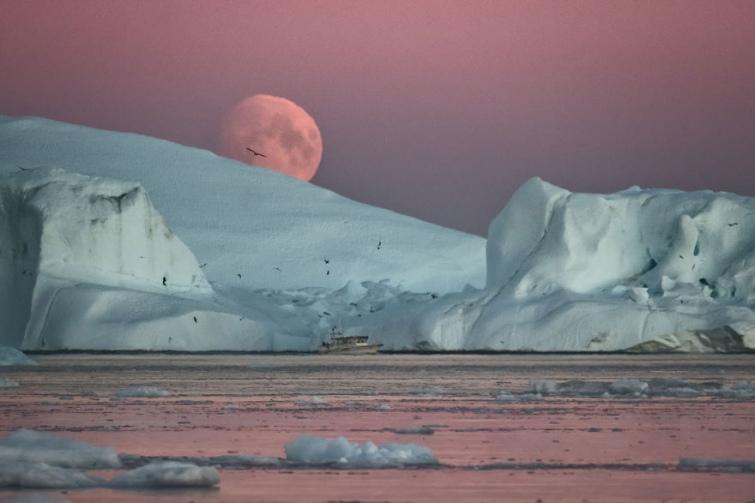 746b290-aisbergy-grenlandia--9-.jpg
