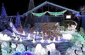 Британець до різдва прикрасив дім 50