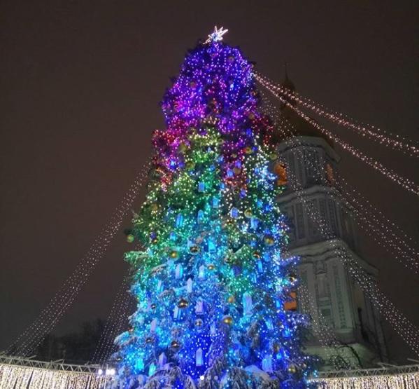 9-метрове дерево для головної ялинки року привезли з Івано-Франківської області.