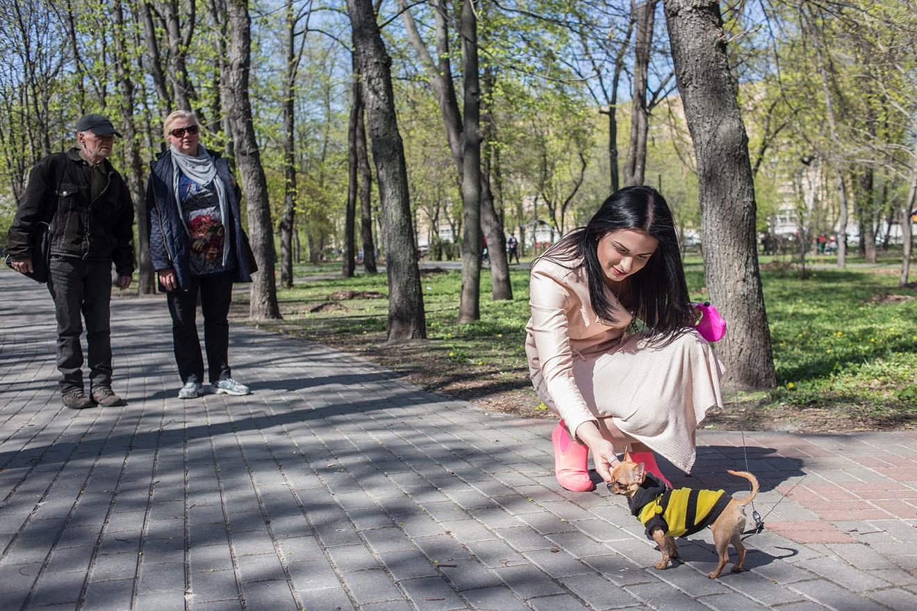 ada6579ea0ff1c У парку всі перехожі милуються маленькою собакою. А чоловіки посміхаються  Кірі та проводжають її зацікавленими поглядами.